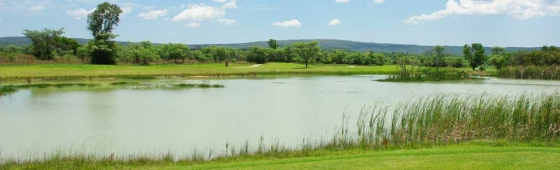 STAND FOR SALE, KORO CREEK GOLF ESTATE!